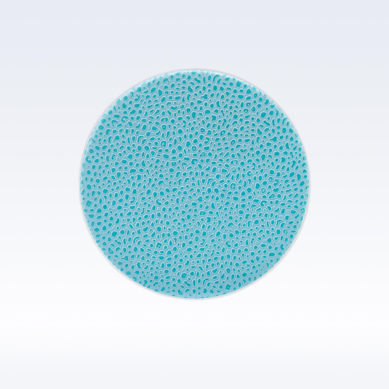 Aqua Caviar Leather Round Coaster Coasters Home