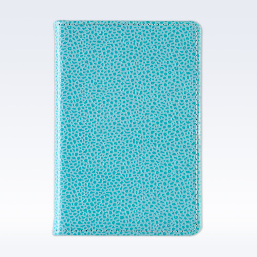 Aqua Caviar Leather A6 Pocket Notebook