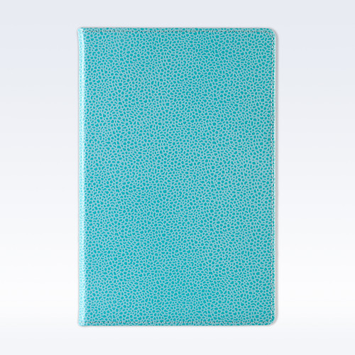 Aqua Caviar Leather A5 Notebook