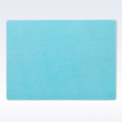 Aqua Caviar Leather Place Mat
