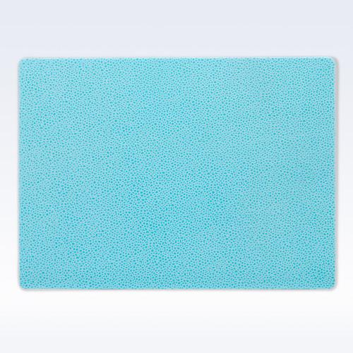 Aqua Caviar Leather Place Mat