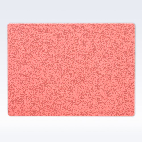 Coral Caviar Leather Place Mat
